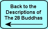 Back to 28 Buddhas